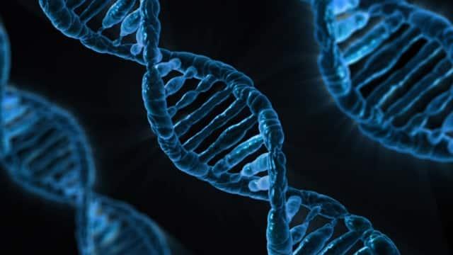 أصغر فيروس اصطناعي يمكن أن يساعد في تطور العلاج الجيني