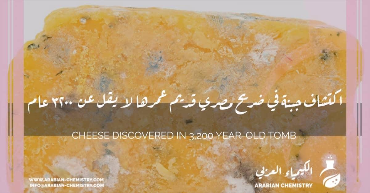 اكتشاف جبنة في ضريح مصري قديم عمرها لا يقل عن 3200 عام